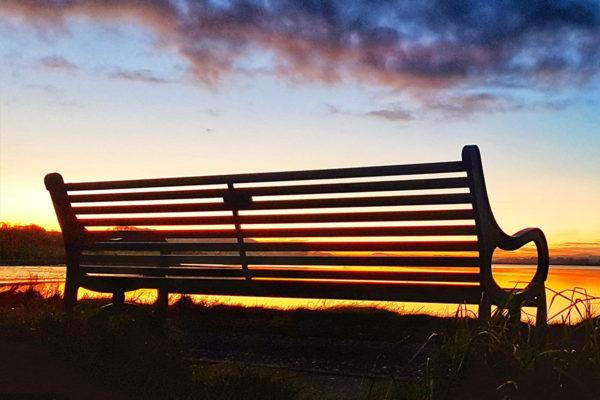 st cyrus bench